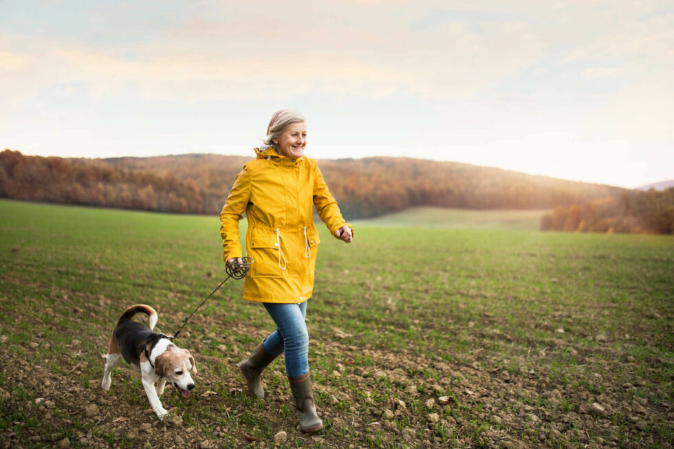 Guide to an Active Retirement